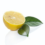 Fresh lemon on white background Stock Photos