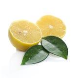 Fresh lemon on white background. Fresh sliced lemon on white background Royalty Free Stock Images