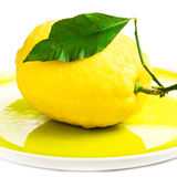 Fresh lemon on yellow plate isolated on white Stock Photography