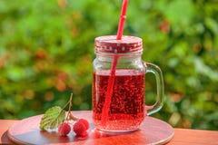 Fresh lemonade, bunch of raspberries outdoors. Stock Image