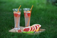 Fresh lemonade. Lemonade grapefruit in nature Stock Image