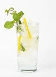 Fresh lemonade Royalty Free Stock Photo