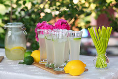 Fresh lemonade. Lemon and lime Royalty Free Stock Image