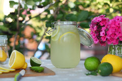 Fresh lemonade. Lemon and lime Stock Image