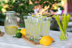 Fresh lemonade. Lemon and lime Royalty Free Stock Photo