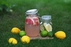 Fresh lemonade. Lemon and lime Royalty Free Stock Photography