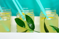 Fresh lemonade with lemon poured into glasses. Fresh lemonade with sliced lemon poured into glasses.In the glass of the inserted tube.Served lemonade on the Stock Photos