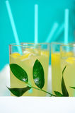 Fresh lemonade with lemon poured into glasses. Fresh lemonade with sliced lemon poured into glasses.In the glass of the inserted tube.Served lemonade on the Royalty Free Stock Photography