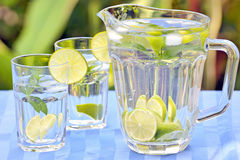 Fresh lemonade and mint. Shoot in garden Stock Photography