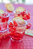 Fresh lemonade with red currant Stock Photography