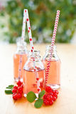 Fresh lemonade with red currant Royalty Free Stock Image