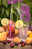 Fresh lemonade and ripe fruits vertical Stock Image