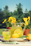 Fresh lemonade on a summer day Royalty Free Stock Image