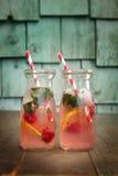 Fresh lemonades Royalty Free Stock Photo