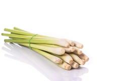 Fresh lemongrass or citronella grass leaf. Studio shot  Stock Images