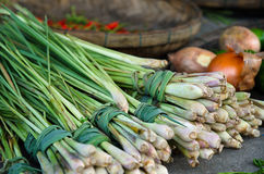 Fresh lemongrass at outdoor market Stock Image