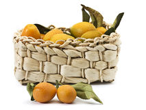 Fresh lemons. Are small in the basket Stock Images