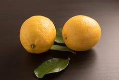 Fresh lemons on the black background Stock Images