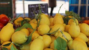 Fresh lemons at farmer market in France, Europe. Italian lemon. Street French market at Nice. Fresh food by local farmers. Fresh vegetables and fruit Royalty Free Stock Image