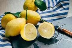 Fresh lemons with green leaves royalty free stock photos