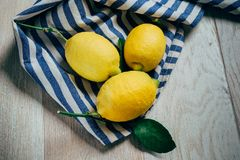 Fresh lemons with green leaves stock image