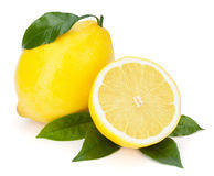 Fresh lemons with leaves. Stock Photo