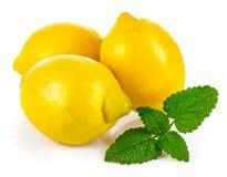 Fresh lemons with leaves melissa. On white background stock photo