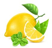 Fresh lemons with leaves and mint. Stock Photography