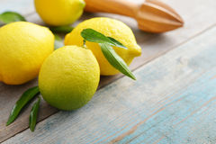 Fresh lemons with leaves Stock Photo