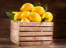 Fresh lemons with leaves in a wooden box Stock Images