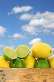 Fresh lemons and lime fruits and some cut ones Royalty Free Stock Photo