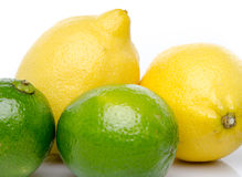 Fresh lemons and limes Stock Image