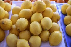 Fresh lemons in the market royalty free stock images