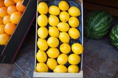 Fresh lemons in an open cardboard box for sale Stock Photos