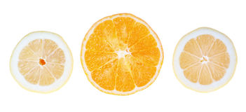 Fresh lemons and oranges in the cut. Royalty Free Stock Photo