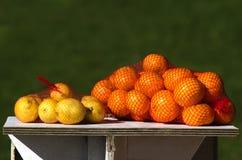 Fresh Lemons and Oranges Stock Photography