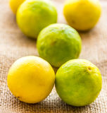 Fresh Lemons. Fresh and organic lemon close-up stock image. Square image of lemon stock photo