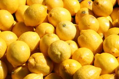 Fresh lemons outdoor Royalty Free Stock Photography