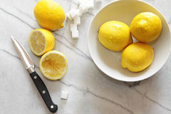 Fresh lemons and sugar cubes on marble counter Royalty Free Stock Image