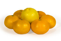 Fresh lemons and tangerins isolated on white Stock Photos