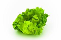 Fresh lettuce Royalty Free Stock Images