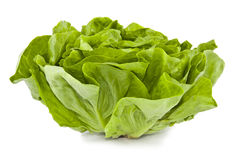 Fresh lettuce. Fresh green lettuce isolated on white background, vegetarian food ingredients royalty free stock images