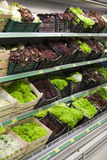 Fresh lettuce. Lettuce section in a grocery store Royalty Free Stock Image