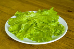 Fresh lettuce. Green fresh salat on the table royalty free stock photography