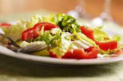 Fresh Lettuce And Pepper Salad Royalty Free Stock Photos