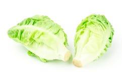 Fresh lettuce (baby cos) Stock Photo