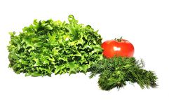 Fresh lettuce frillice salad dill and tomato Stock Photos
