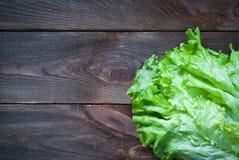 Fresh lettuce Stock Images