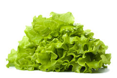 Fresh lettuce isolated Royalty Free Stock Photo
