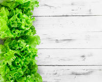 Fresh lettuce leaves border over white wooden plank background Royalty Free Stock Photo